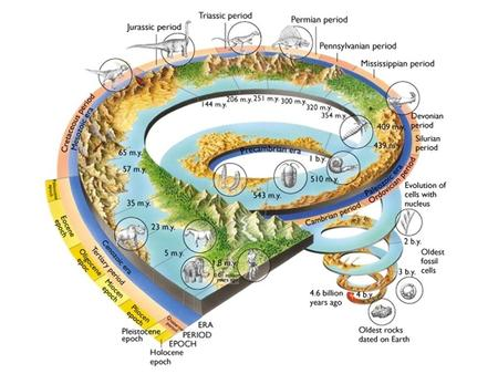 4 Main Divisions of Geologic Time Eon – Largest division of time; there are 4 of them Hadean, Archean, Proterozoic, Phanerozoic Era – Eons are divided.