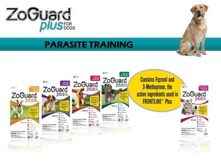 PARASITE TRAINING. ZoGuard Plus Protects Against Major Parasites  Fleas  Adults  Eggs  Larvae  Ticks  Mosquitoes  Chewing lice.
