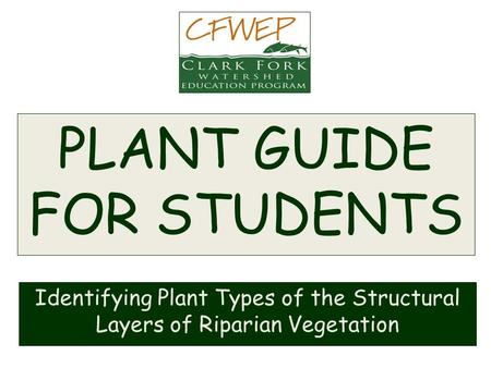 PLANT GUIDE FOR STUDENTS Identifying Plant Types of the Structural Layers of Riparian Vegetation.