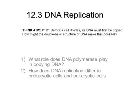 12.3 DNA Replication 1)What role does DNA polymerase play in copying DNA? 2)How does DNA replication differ in prokaryotic cells and eukaryotic cells THINK.