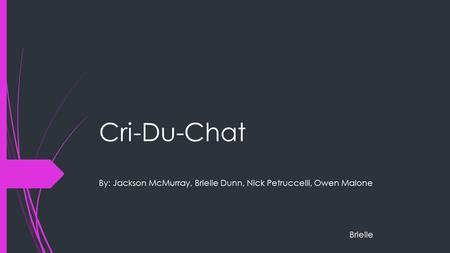 Cri-Du-Chat By: Jackson McMurray, Brielle Dunn, Nick Petruccelli, Owen Malone Brielle.