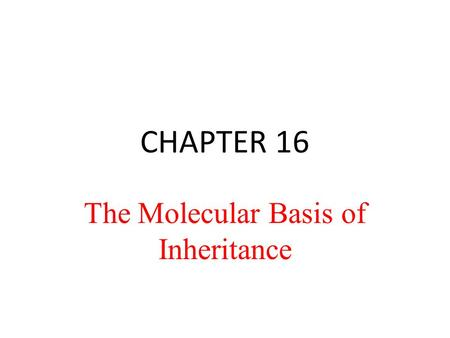 CHAPTER 16 The Molecular Basis of Inheritance. Life's Operating Instructions In 1953, James Watson and Francis Crick introduced an elegant double-helical.