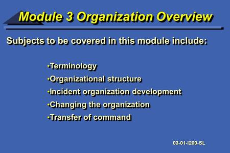 Module 3 Organization Overview Module 3 Organization Overview Subjects to be covered in this module include: Terminology Terminology Organizational structure.