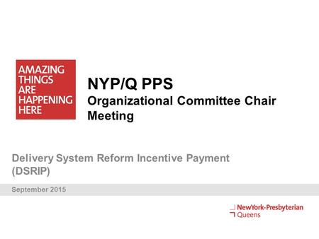 NYP/Q PPS Organizational Committee Chair Meeting Delivery System Reform Incentive Payment (DSRIP) September 2015.
