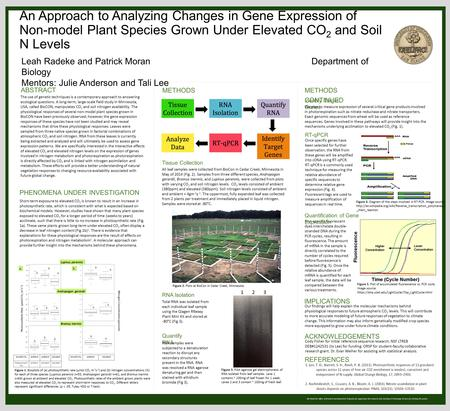 We thank the Office of Research and Sponsored Programs for supporting this research, and Learning & Technology Services for printing this poster. An Approach.