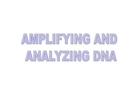 AMPLIFYING DNA A.Recombinant DNA B.Polymerase Chain Reaction (PCR) (animation)