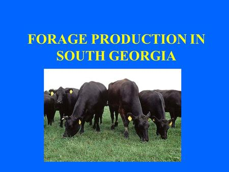 FORAGE PRODUCTION IN SOUTH GEORGIA. PASTURES CAN PROVIDE: INEXPENSIVE HIGH QUALITY FEED IN THE FORM OF GRAZING, HAY OR SILAGE PASTURES AND HAY CAN SUPPLY.
