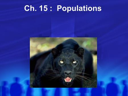 Ch. 15 : Populations. What is a Population? Populations **Population: All individuals of a species living in a certain place Growth? Birth of offspring.