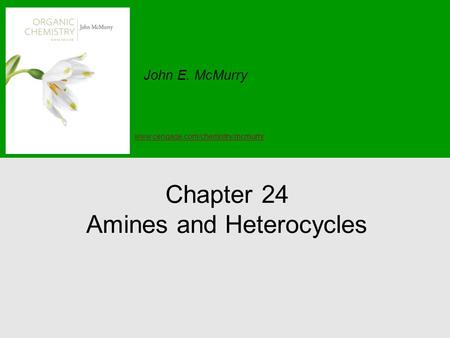Chapter 24 Amines and Heterocycles