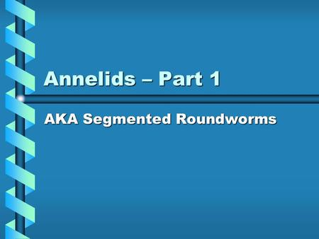 Annelids – Part 1 AKA Segmented Roundworms. Annelids The word annelid is derived from the word annulus which means ring.The word annelid is derived from.