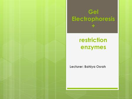 Gel Electrophoresis + restriction enzymes Lecturer: Bahiya Osrah.