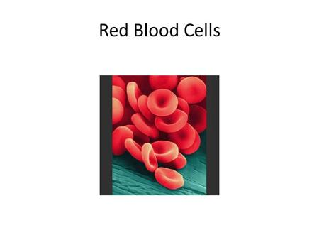 Red Blood Cells. Adapted exclusively for producing and packaging hemoglobin which transports oxygen Adult male: 4.6 – 6 million Adult female: 4.2 – 5.