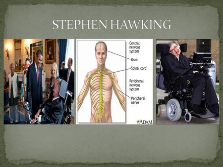 NEXT Stephen William Hawking(born 8 January 1942) is a British theoretical physicist. He is known for his contributions to the fields of cosmology and.