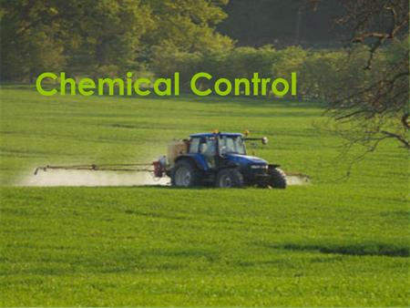 Chemical Control. What is chemical pesticide control?  Chemical pesticides use chemicals (synthetic or natural) to kill the targeted pest.  When using.