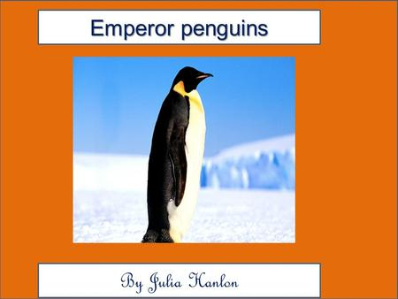 Emperor penguins By Julia Hanlon. Animal Facts Description Am Emperor penguin Colors are yellow, orange, black, white, gray and a very dark blue. And.