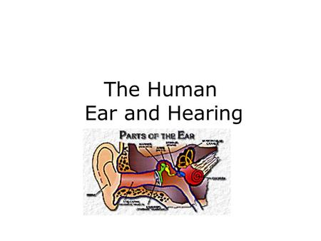 The Human Ear and Hearing. Initial experiments on the frequency sensitivity of the human ear.