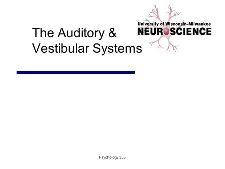 Psychology 355 The Auditory & Vestibular Systems.
