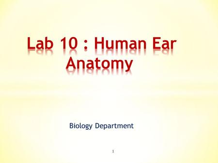 Biology Department 1. 2  The ear is the organ of hearing and, in mammals, balance.  In mammals, the ear is usually described as having three parts: