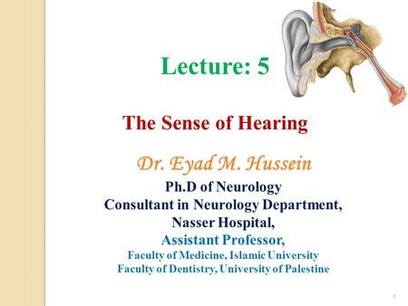 1 Lecture: 5 The Sense of Hearing Dr. Eyad M. Hussein Ph.D of Neurology Consultant in Neurology Department, Nasser Hospital, Assistant Professor, Faculty.