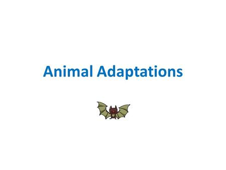 Animal Adaptations. WHAT ARE ADAPTATIONS? An adaptation is What are some adaptations you can think of? a body part (physical characteristic) or behavior.