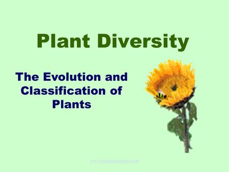 Plant Diversity The Evolution and Classification of Plants www.assignmentpoint.com.