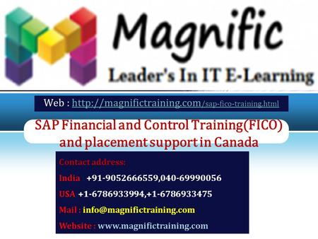 LOGO SAP Financial and Control Training(FICO) and placement support in Canada Web :  /sap-fico-training.htmlhttp://magnifictraining.com.