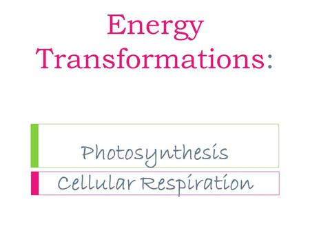 Energy Transformations: Photosynthesis Cellular Respiration.