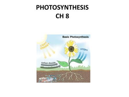 PHOTOSYNTHESIS CH 8. I. How organisms obtain food Without the ability to obtain and use energy, life would cease to exist.