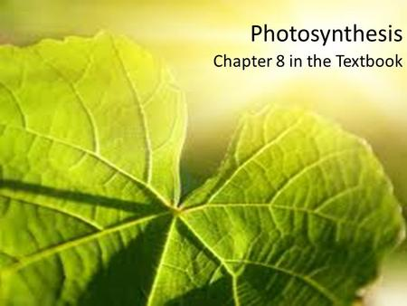 Photosynthesis Chapter 8 in the Textbook. Chemical Energy and ATP What type of organic macromolecule is shown in the diagram? The in the diagram label.