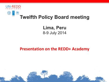 Twelfth Policy Board meeting Lima, Peru 8-9 July 2014 Presentation on the REDD+ Academy.