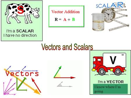I know where I'm going. A scalar is a quantity described by just a number, usually with units. It can be positive, negative, or zero. Examples: –Distance.