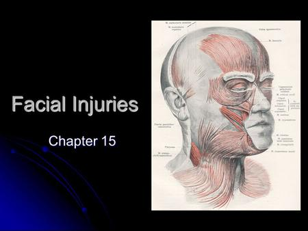 Facial Injuries Chapter 15. The Anterior Eye The Eye sits in the Orbital Foramen (Orbit). The Eye sits in the Orbital Foramen (Orbit). The white outer.