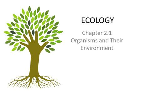 ECOLOGY Chapter 2.1 Organisms and Their Environment.