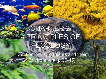 CHAPTER 2 – PRINCIPLES OF ECOLOGY Section 2-1: Organisms and their Environment (p.35-45)