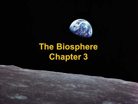 The Biosphere Chapter 3. Section 1: What is Ecology? Ecology – the scientific study of interactions among organisms and between organisms and their environment,