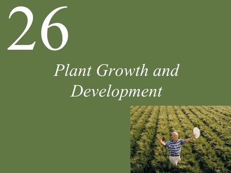 Plant Growth and Development 26. Chapter 26 Plant Growth and Development Key Concepts 26.1 Plants Develop in Response to the Environment 26.2 Gibberellins.