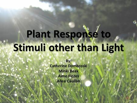 Plant Response to Stimuli other than Light