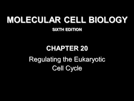 MOLECULAR CELL BIOLOGY SIXTH EDITION MOLECULAR CELL BIOLOGY SIXTH EDITION Copyright 2008 © W. H. Freeman and Company CHAPTER 20 Regulating the Eukaryotic.