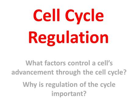 Cell Cycle Regulation What factors control a cell's advancement through the cell cycle? Why is regulation of the cycle important?