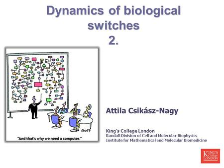 Dynamics of biological switches 2. Attila Csikász-Nagy King's College London Randall Division of Cell and Molecular Biophysics Institute for Mathematical.