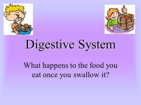 Digestive System What happens to the food you eat once you swallow it?