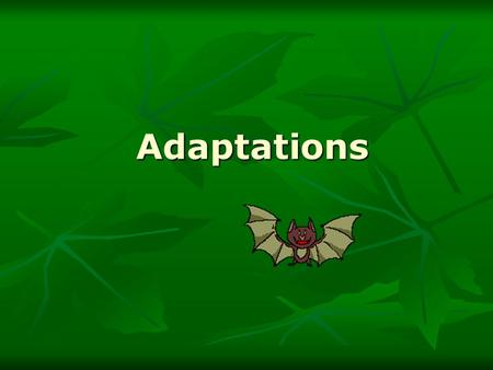 Adaptations Adaptations. Types of Adaptation Anything that helps an organism survive in its environment Anything that helps an organism survive in its.