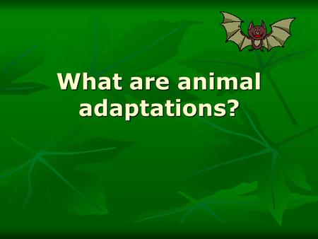 What are animal adaptations?. An adaptation is an inherited characteristic which enable an organism to survive and reproduce in a particular environment.