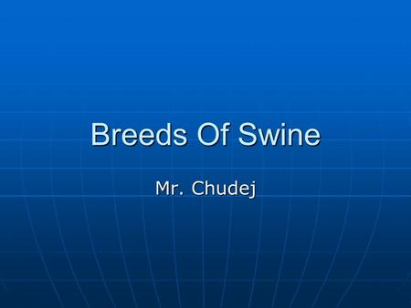 Breeds Of Swine Mr. Chudej. American Landrace From Denmark From Denmark Medium to large Breed Medium to large Breed White Hog White Hog Long body length.