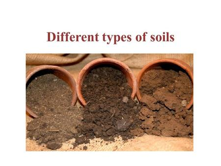Different types of soils. SUBMERSED SOILS - ORGANIC SOILS Based on organic content, soils grouped into mineral soil and organic soil The mineral soils.