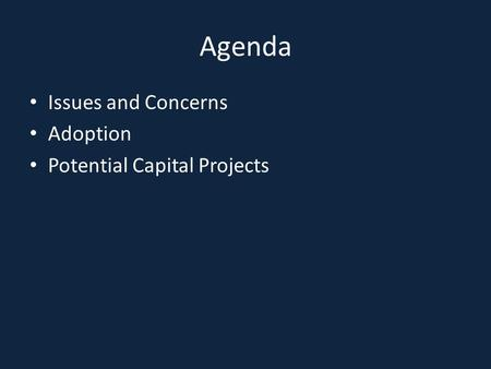 Agenda Issues and Concerns Adoption Potential Capital Projects.