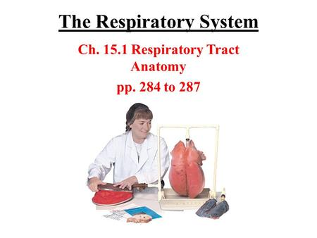 The Respiratory System Ch. 15.1 Respiratory Tract Anatomy pp. 284 to 287.
