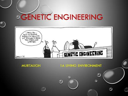GENETIC ENGINEERING MURTAUGH 1A LIVING ENVIRONMENT.