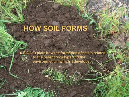 HOW SOIL FORMS 6.E.2.3 Explain how the formation of soil is related to the parent rock type and the environment in which it develops.