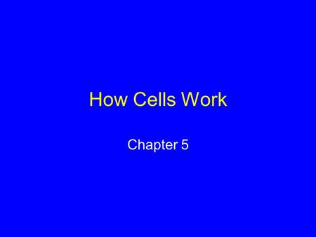 How Cells Work Chapter 5. What Is Energy? Capacity to do work Forms of energy –Potential energy –Kinetic energy –Chemical energy.